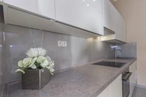 ApartmanC-Kitchen_pic2